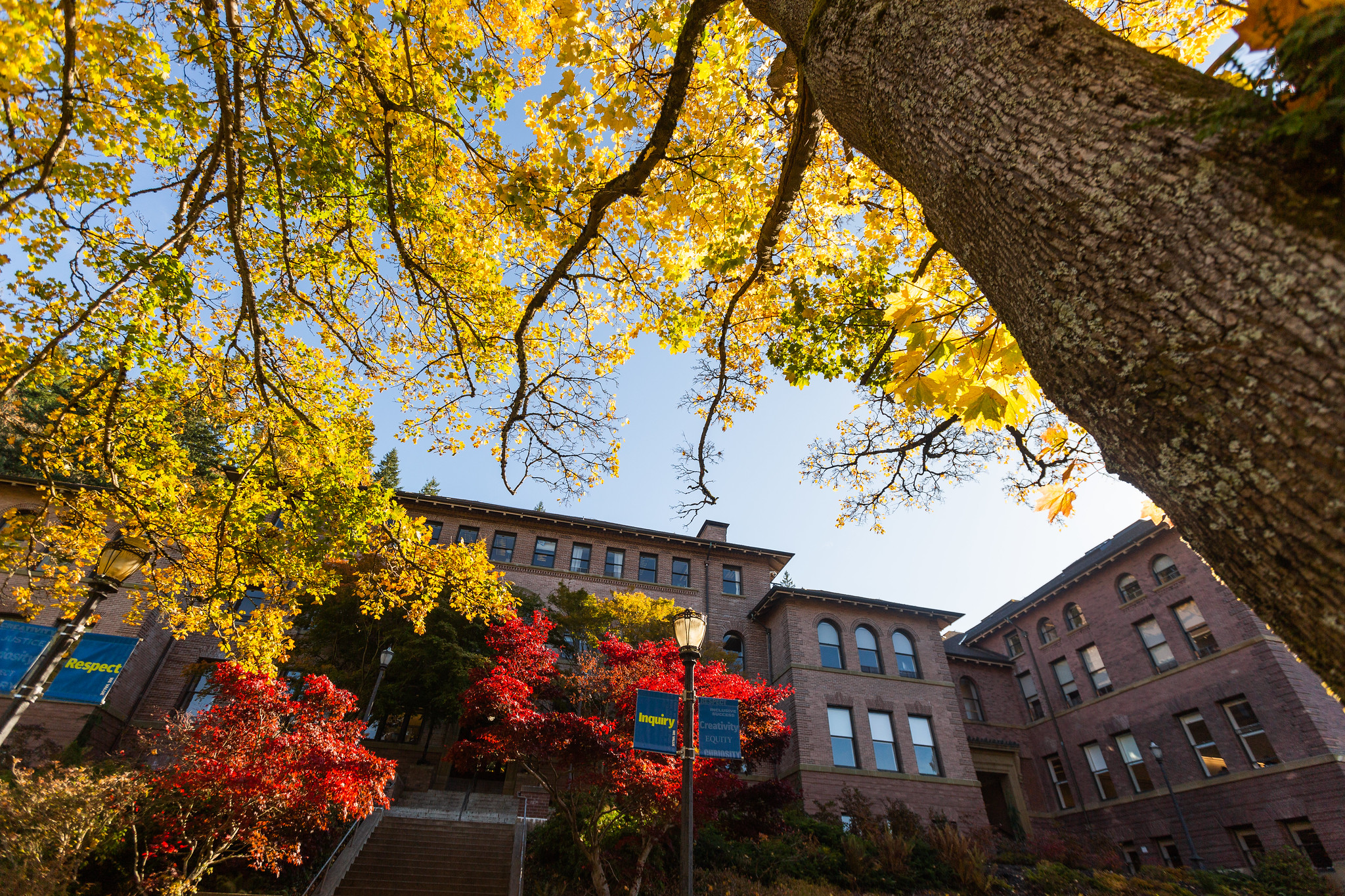 Old Main surrounded by colorful fall foliage