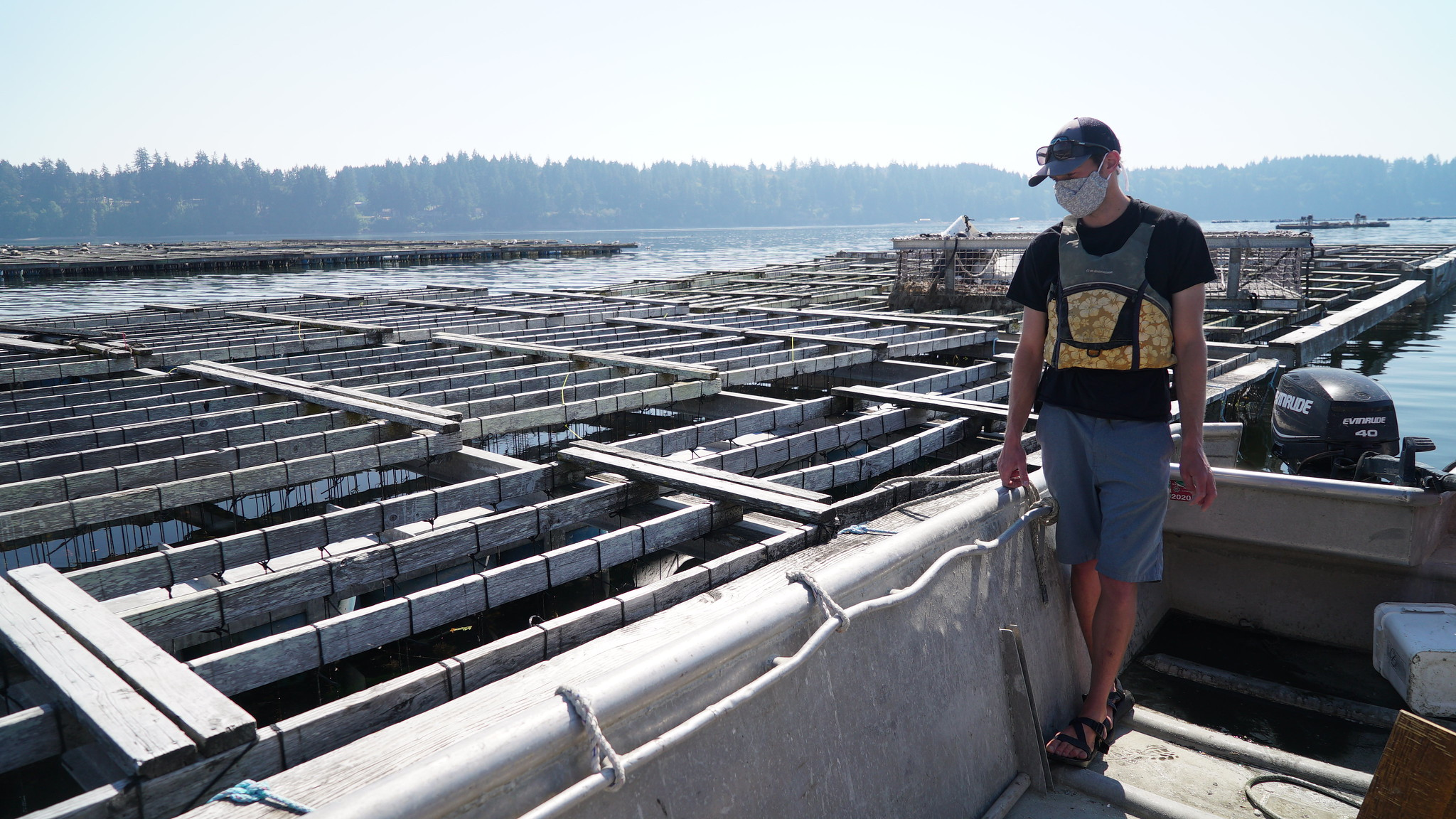 WWU grad student Casey Pruitt prepares to set up his data collection station at a floating mussel aquaculture pen on Totten Inlet northwest of Olympia.