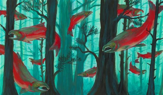 Miranda Ward's illustration of coho salmon. (Photo courtesy of Miranda Ward)