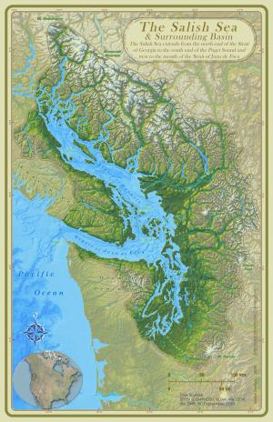 map of the Salish Sea, from the Narrows to the south tip of Hood Canal